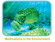 Masked Fish - Medications in the Environment